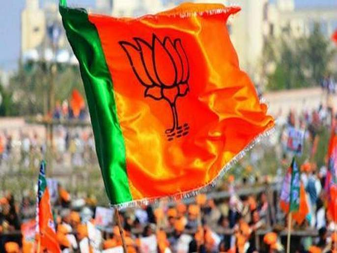 Composite success in the by-elections; BJP 6 and MNS 1 seats won   पोटनिवडणुकीत संमिश्र यश;माकप ६, भाजप ६, तर मनसे १ जागी विजयी