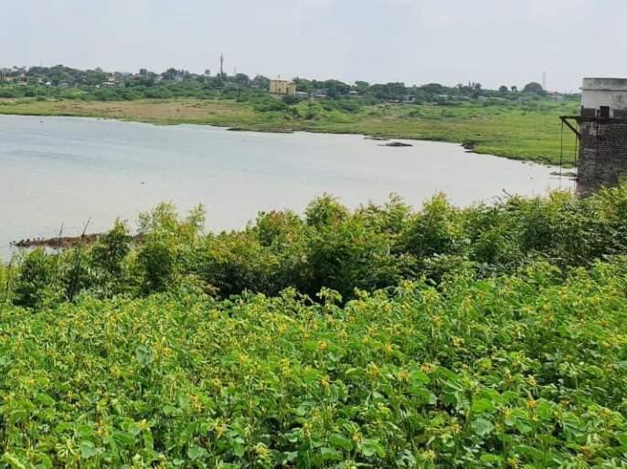 Experiment to take Ujani water in Hipparga Lake successful | उजनीचे पाणी हिप्परगा तलावात घेण्याचा प्रयोग यशस्वी