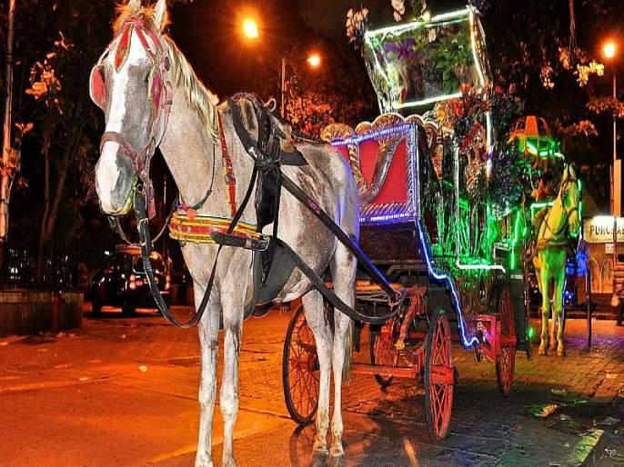 Electric horse carriage in Mumbai, Thane; Electric Vehicle Policy Discounts apply | मुंबई, ठाण्यात टांग्यांच्या जागी विद्युत घोडागाडी; इलेक्ट्रिक व्हेइकल धोरणाच्या सवलती लागू