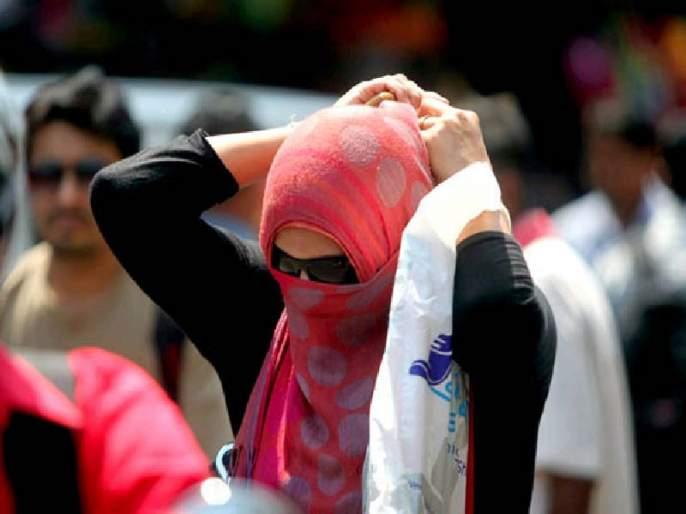 88 cases of heat stroke in the state | राज्यात उष्माघाताचे ८८ रुग्ण