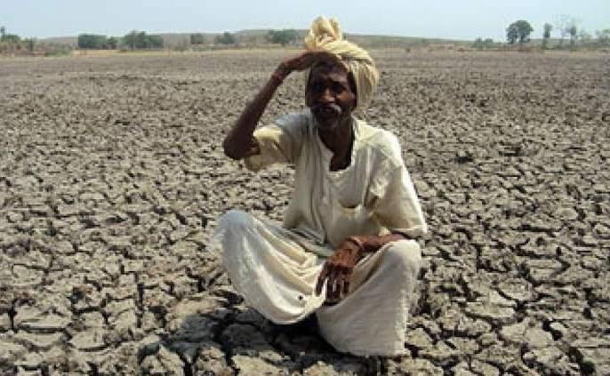 You tell me, how does a farmer survive?   तुम्हीच सांगा, शेतकऱ्याने जगायचं कसं?