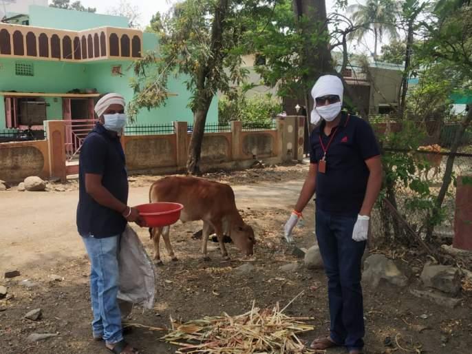 CoronaVirus: pasture water for animals in lockdown; Honorable activities of youth in Ambajogai | CoronaVirus : लॉकडाऊनमध्ये जनावरांना चारा-पाण्याची व्यवस्था; अंबाजोगाईत युवकांचा स्तुत्य उपक्रम