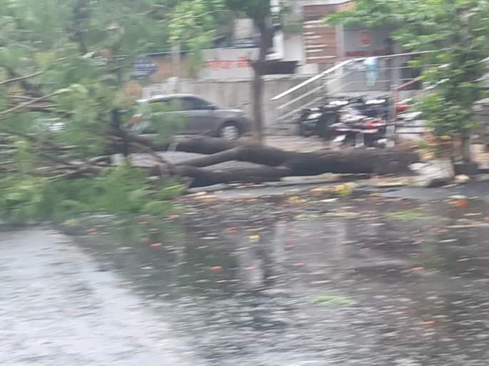 Heavy rains in Pune due to nisarga cyclone | निसर्ग चक्रीवादळामुळे पुण्यात पावसाची जोरदार बॅटिंग; वाऱ्याचा वेग ताशी 65 -70 किलोमीटर