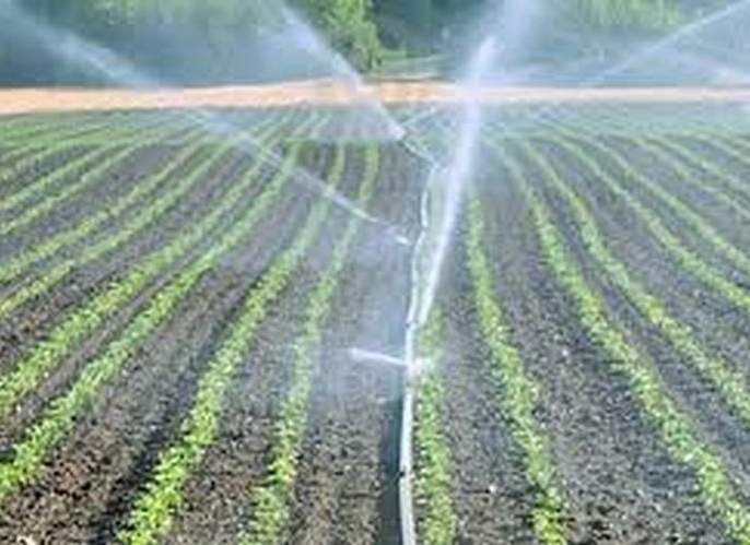 The utility of micro-irrigation fund has to be shown! | सुक्ष्म सिंचनच्या निधीची दाखवावी लागणार उपयोगिता !