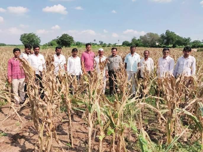 Thousands of farmers were killed in Jamkhed taluka | जामखेड तालुक्यात ११ हजार शेतक-यांना नुकसानीचा फटका