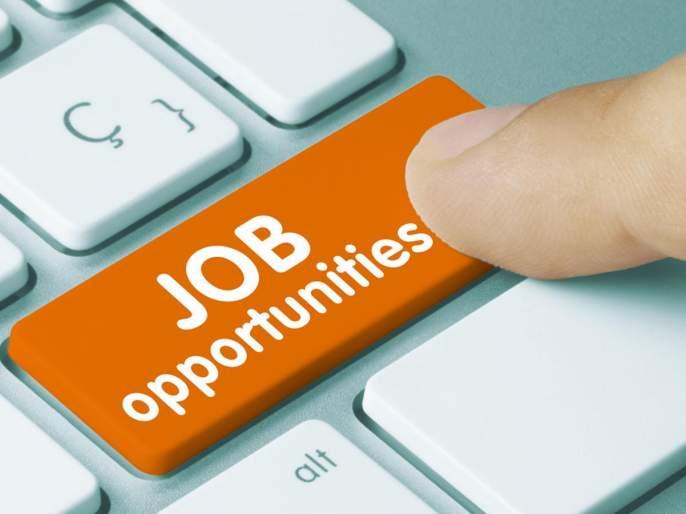 sarkari naukri ncl recruitment 2020 apprentice job vacancy 480 post online apply last date 15 november | NCL Recruitment 2020: दहावी-बारावी उत्तीर्ण असणाऱ्यांसाठी नोकरीची संधी, परीक्षेशिवाय ४८० जागा भरणार