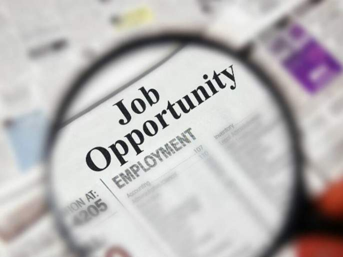 Job opportunities for trainee graduates in UGVCL, apply today ... | UGVCLमध्ये प्रशिक्षणार्थी पदवीधरांसाठी नोकरीची सुवर्णसंधी, आजच अर्ज करा...