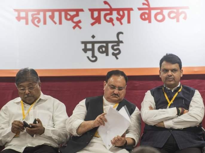Do not politicize what the party has to say - whatever. P. Nadda | नेतेगिरी मिरवू नका पक्षाला काय दिले ते सांगा - जे. पी. नड्डा