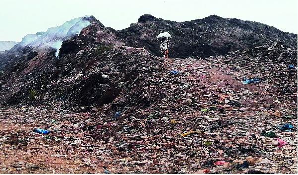 Five lakhs of rupees will be required for each from the garbage project: Vinayak Raut | कचरा प्रकल्पातून प्रत्येकावर पाच लाखांचा पडणार बोजा:विनायक राऊत