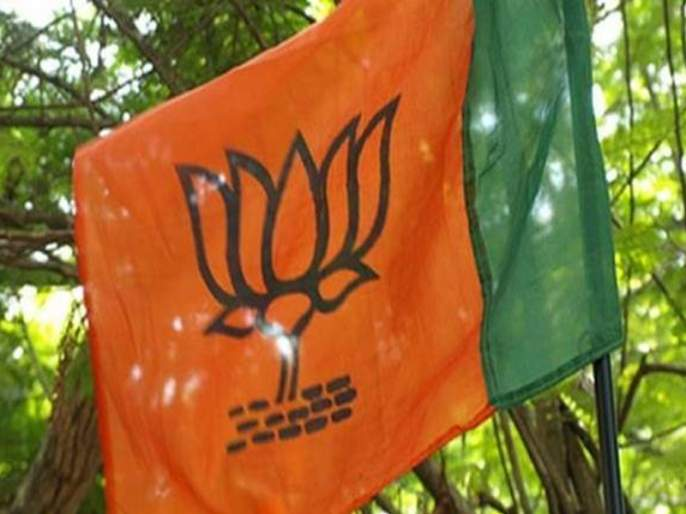 Rajasthan Local Body Election Results 2019: Congress wins 23, while BJP 6 and 20 seats for others | भाजपाला धक्का; २३ पालिका काँग्रेसच्या 'हाता'त, राजस्थानातून ओसरली 'मोदी लाट'!