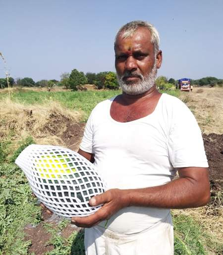 90 tonnes of fruit and acre taken in one acre yielded 2.5 lakhs | एकरात घेतले २९ टन फळपीक अन् उत्पन्न मिळवले अडीच लाख