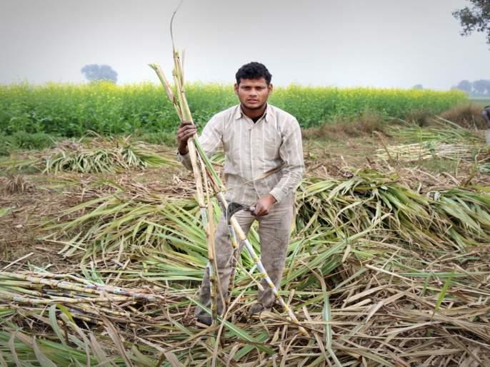 Settlement in the interest of sugarcane farmers and manufacturers | ऊस शेतकरी-कारखानदारांच्या हिताचा तोडगा; स्वाभिमानीची झाकली मूठ