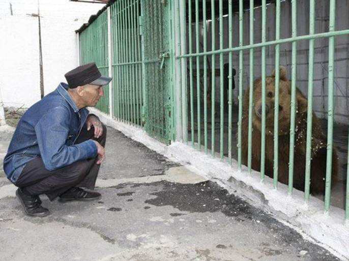Katya the brown bear serving a life sentence in a Kazakh prison | ७३० कैद्यांसोबत तुरुंगात कैद आहे एक अस्वल, यासाठी मिळाली त्याला जन्मठेपेची शिक्षा!