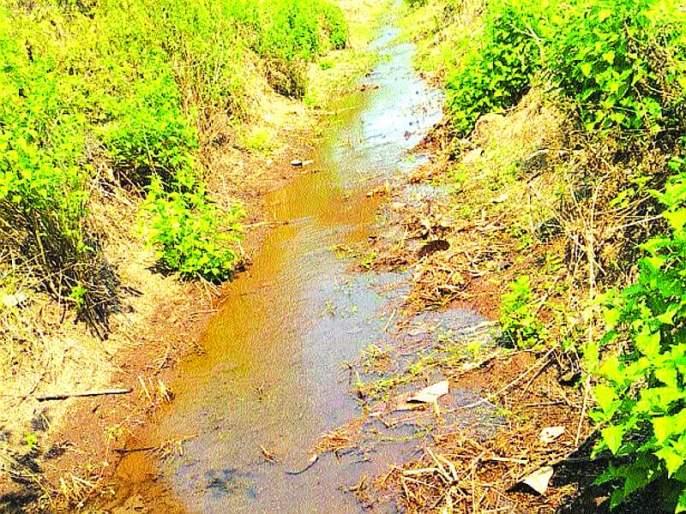 Lokmat Impact - Water coming from the village of Veholi village | लोकमत इम्पॅक्ट - वेहळोली गावातील शेतीला आले पाणी