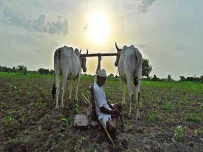 Implementation of Kisan Samman Yojana stops for two months! | किसान सन्मान योजनेची अंमलबजावणी दोन महिन्यांपासून ठप्प!
