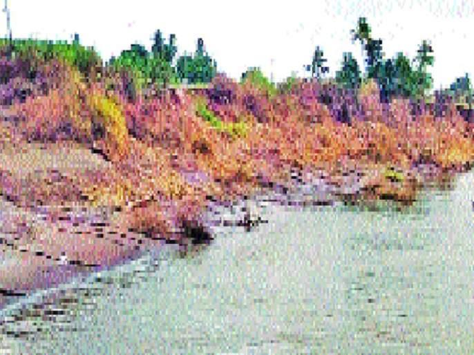 'Krishna' is swallowing land | 'कृष्णा' गिळतेय जमिनी --: बोरगाव परिसरातील स्थिती