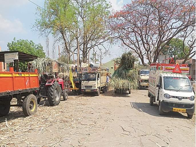 In the drought-hit Marathwada, the farmers depend on Ahmednagar's sugarcane for their animals | दुष्काळी मराठवाड्यात शेतकरी जनावरांच्या चाऱ्यासाठी अहमदनगरच्या उसावर अवलंबून