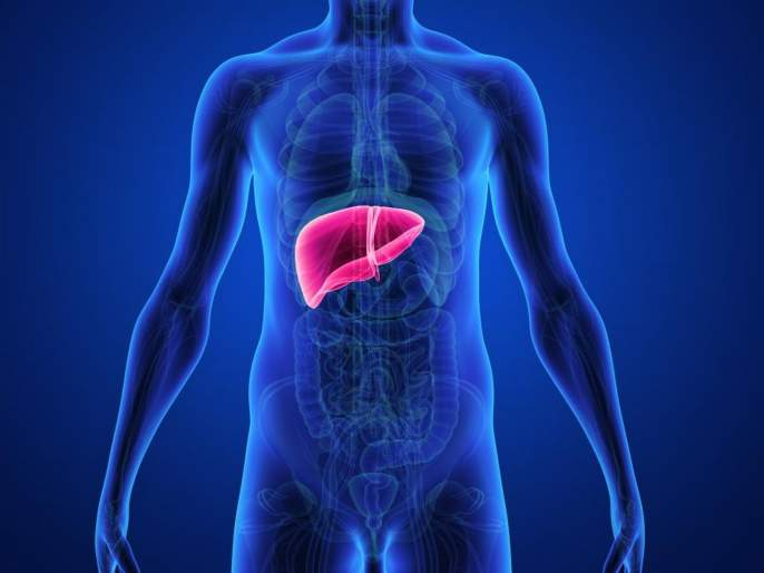 10% of 580 people have liver fats in Mumbai   ५८० व्यक्तींपैकी १० टक्के मुंबईकरांचे यकृत चरबीयुक्त