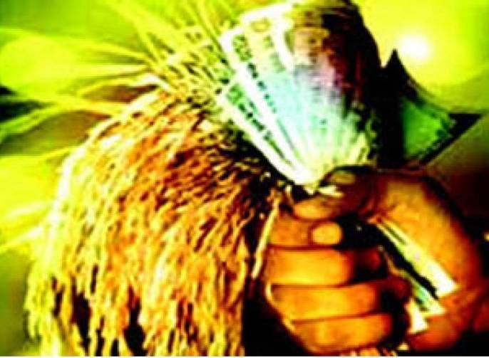 59,000 farmers did not get crop loan!   ५९ हजार शेतकऱ्यांना मिळाले नाही पीक कर्ज!