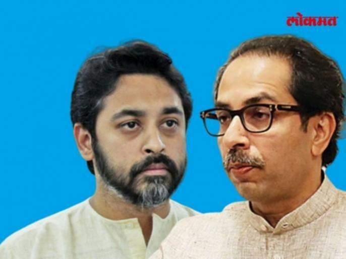 Nilesh Rane criticizes Chief Minister Uddhav Thackeray over his visit to Konkan | मुख्यमंत्र्यांमध्ये निर्णय घेण्याची 'धमक' नाही: निलेश राणेंची टीका