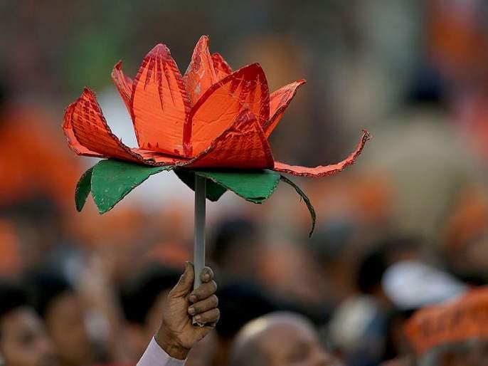 Maharashtra Election 2019 : Button presses anywhere, votes very much, BJP candidate's vigorous claim | Video : 'बटन कुठलही दाबा, मत कमळालाच', भाजपा उमेदवाराचा खळबळजनक दावा