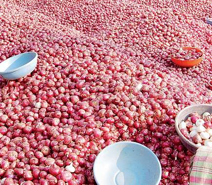 Fear of falling from imported onions; There is no demand from the states for the reduction of rates | आयात केलेला कांदा सडून जाण्याची भीती;दर कमी झाल्याने राज्यांकडून मागणी नाही