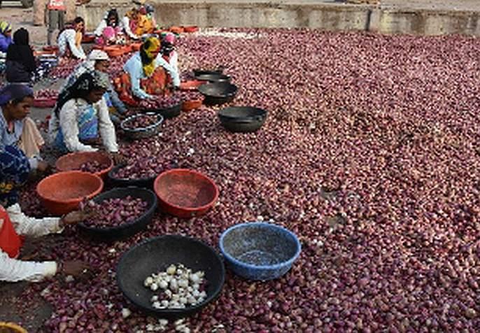 This year the onion reached Shambhari | यंदा कांद्याने गाठली शंभरी