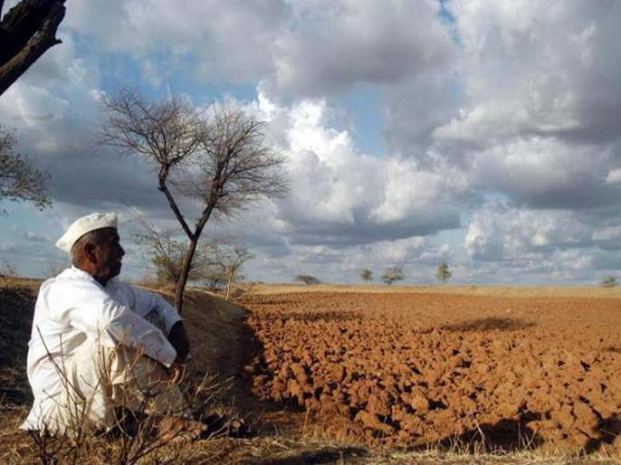 In the agricultural crisis of the state, production will fall by 8% | राज्यातील शेती संकटात, उत्पादन ८ टक्क्यांनी घटणार