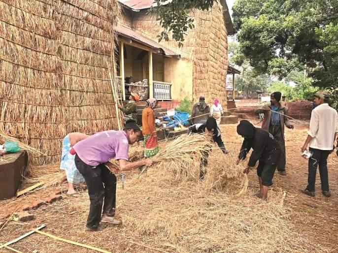 Raincoat Blossom Buildings Protecting from the heavy rains in Mahabaleshwar | इमारतींना रेनकोट गवताचे । महाबळेश्वरमधील अती पावसापासून रक्षण