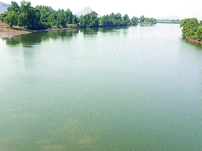 Due to the chemical waste fish death in Savitri River in Mahad | महाड औद्योगिक क्षेत्रातील रासायनिक सांडपाण्यामुळे नदीतील मासे झाले नाहीसे