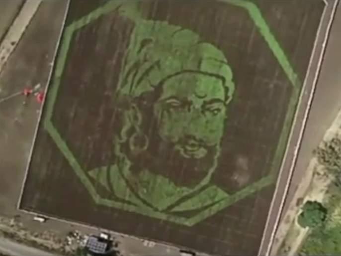 People are sharing google maps locate a crop art tribute to Chhatrapati Shivaji Maharaj video goes viral | Video: सहा एकर शिवारात अवतरले छत्रपती शिवराय; बळीराजाने साकारला 'रयतेचा राजा'