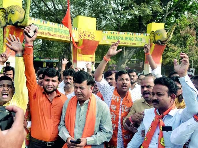 Political parties have come to save Maharajbagh | महाराजबागेच्या बचावासाठी सरसावले राजकीय पक्ष