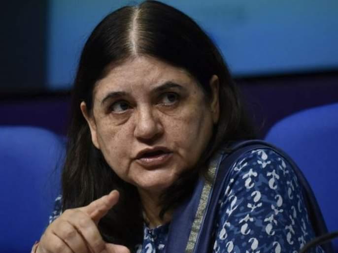 lok sabha election Bjp Leader Maneka Gandhi Angry On Her It Cell After Video Of The Statement On Muslims Goes Viral | मुस्लिमांबद्दलच्या विधानानं मेनका अडकल्या; भाजपाच्याच आयटी सेलवर भडकल्या