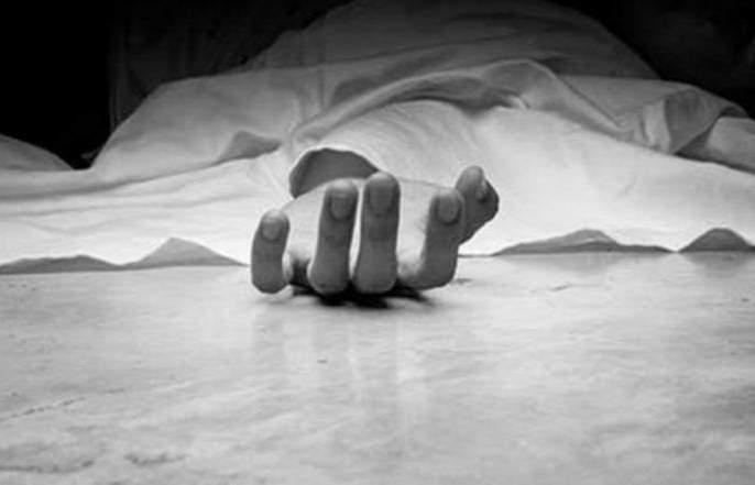 In Nagpur Metro vehicle crushed labor | नागपुरात मेट्रोच्या वाहनाने मजुरास चिरडले