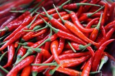 The pace of the arrival of 2,000 quintals of chilli every day in the market committee | बाजार समितीत दर दिवशी 2 हजार क्विंटल मिरचीच्या आवकमुळे तेजी