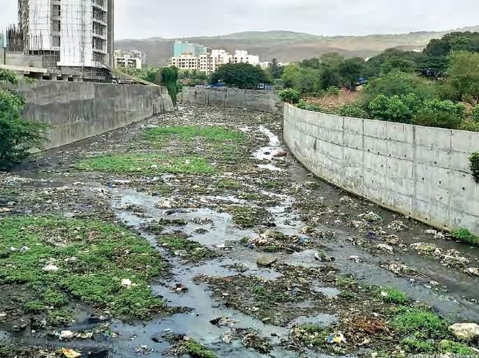In the future, Oshiwara, Mithi river will drown in Mumbai | भविष्यात ओशिवरा, मिठी नदी मुंबईला बुडवणार; मेट्रो भवन, कारशेड धोकादायक ठरणार