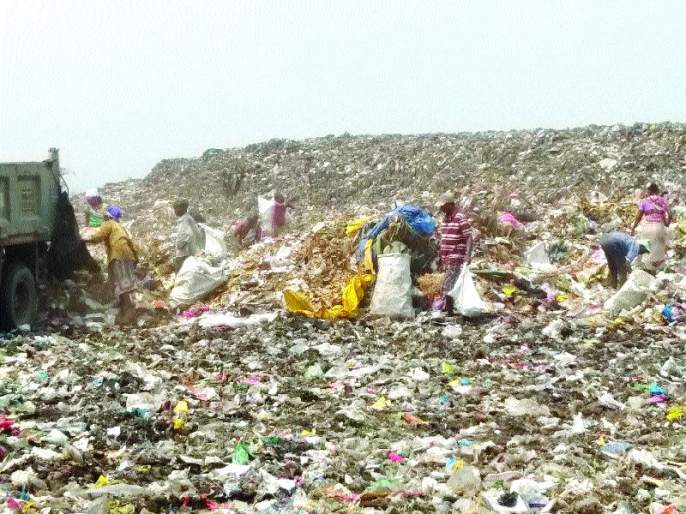 Dumping plastic bags costs! KDMC has a restricted paper   डम्पिंगवर प्लास्टिक पिशव्यांचा खच! केडीएमसीची बंदी कागदावरच