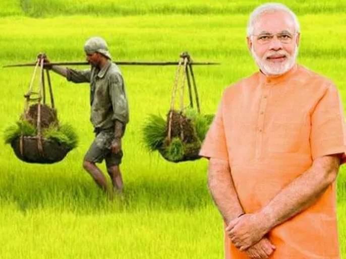 budget 2019 modi government may bring cashback scheme for farmers | मोदी सरकारचं मोठं गिफ्ट, शेतकऱ्यांसाठी आणणार कॅशबॅक स्कीम