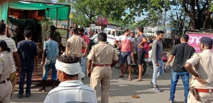 Stray animals seized: Mankapur police raid | मोकाट जनावरे ताब्यात : मानकापूर पोलिसांची धडक कारवाई