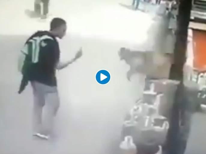 Paying back with interest, Monkey hit on boy face who teas him, Watch Video | Viral Video: माकडाशी पंगा घेऊ नका; नाहीतर अशी होईल गत!