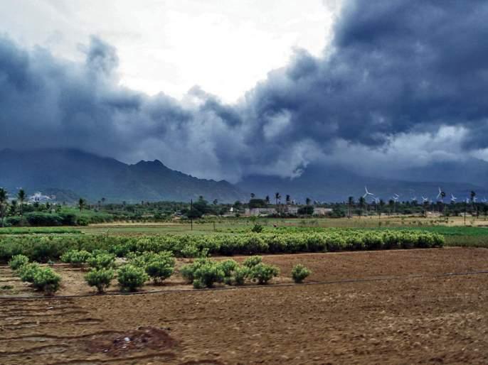 The state will dry for next five days   राज्यात पुढचे पाच दिवस कोरडे