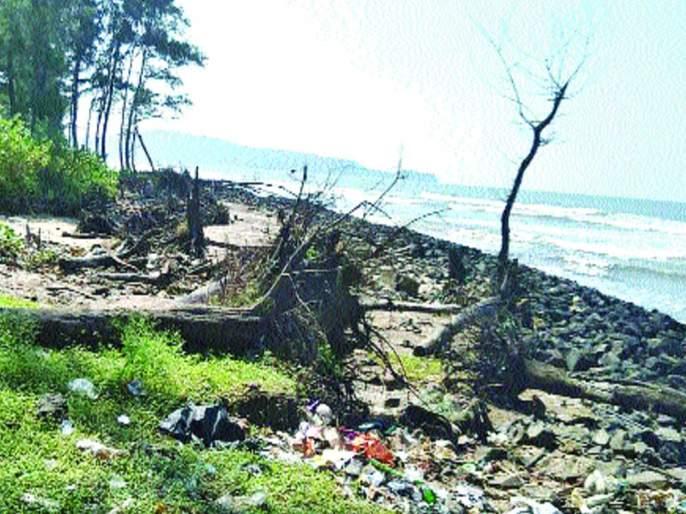 The plight of the Murud beach dam   मुरुड समुद्रकिनाऱ्याची बंधा-याअभावी दुर्दशा