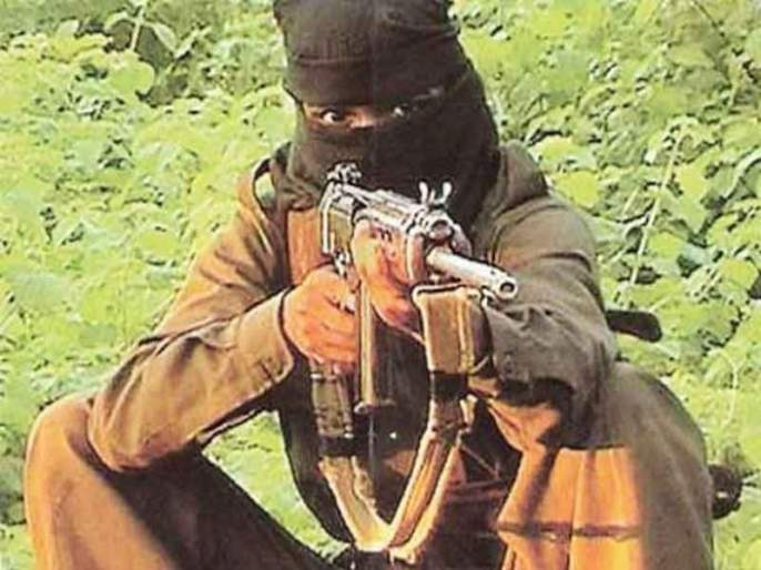 Death of two Naxalites; Both arrested | दोन नक्षलवाद्यांचा खात्मा; दोघांना अटक
