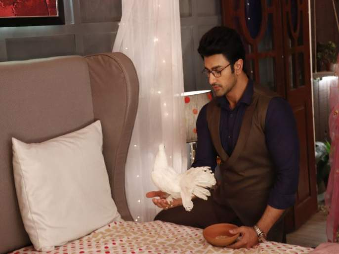 Nishant Singh Malkani's special connection on the sets of Guddan... Tumse Na Ho Paega | 'गुड्डन… तुमसे ना हो पाएगा'च्या सेटवर निशांतला मिळाली 'ही' कंपनी!
