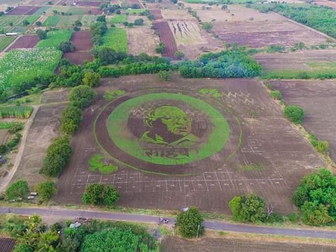 Sharad Pawar's image on 4.5 acres farm in kalamb, farmer gift to birthday of sharad pawar | शेतकऱ्याचा नादच खुळा, 4.5 एकरात साकारली शरद पवारांची प्रतिमा