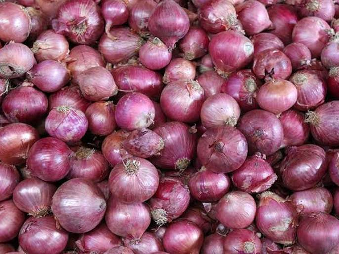 Thousands of tonnes of onion will be imported by the end of the month | महिनाअखेरपर्यंत हजार टन कांदा आयात होणार
