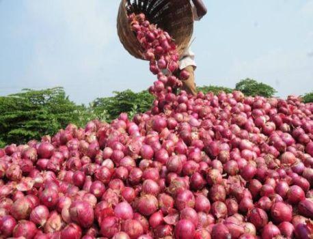 One lakh metric tonnes of onion will come in a month | महिनाभरात येणार एक लाख मेट्रिक टन कांदा