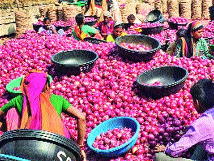 Onion growers worried | दरात घसरण; कांदा उत्पादक चिंतित