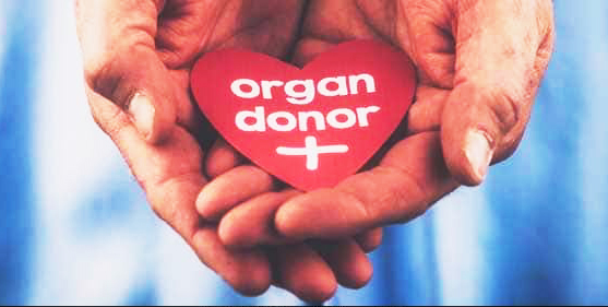 Organ donation | अवयवदान श्रेष्ठदान
