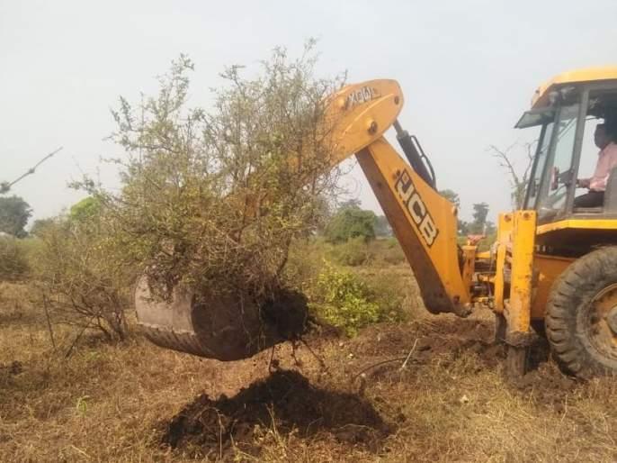 Farmers uprooted pomegranate garden due to no cost of production! | उत्पादन खर्चही न निघाल्याने शेतकऱ्याने उपटली डाळींब बाग!